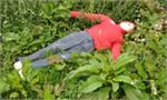 Ruth Lee Mass Casualty Training Manikin - Grass